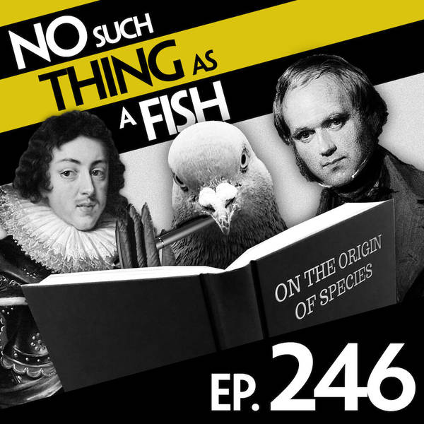 246: No Such Thing As The Worm Revolution