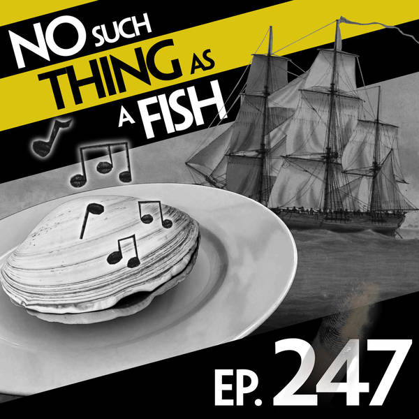 247: No Such Thing As Footprints On The Sea