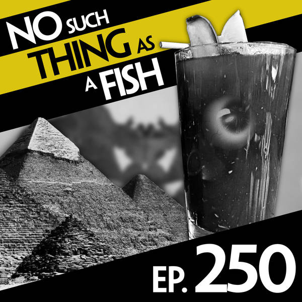 250: No Such Thing As The Mysterious Chamber