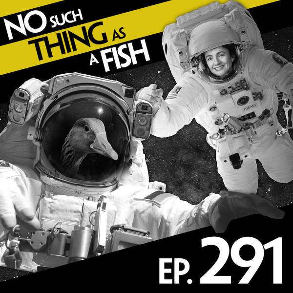 291: No Such Thing As A Quintruple-Cooked Chip