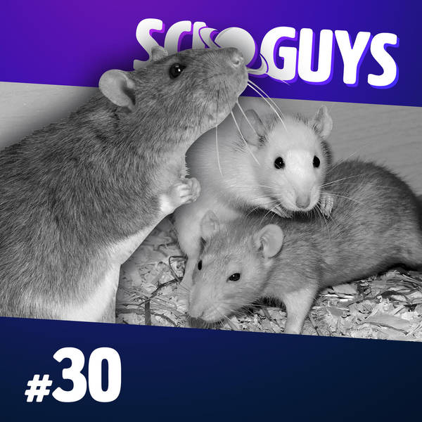 30: Rat Utopia