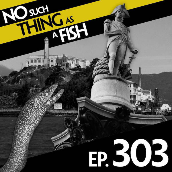 303: No Such Thing As Suckling's Column