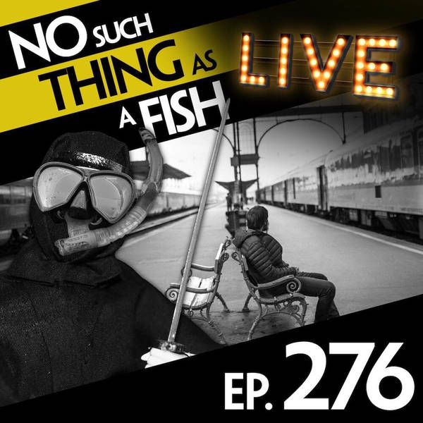 276: No Such Thing As A Ninja With A Cat