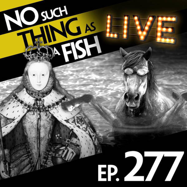 277: No Such Thing As An Elephant Polo Rider In A Sombrero