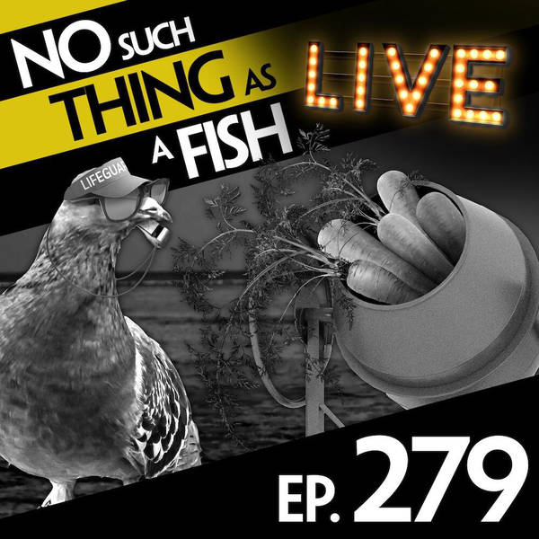 279: No Such Thing As A Backflipping Doctor