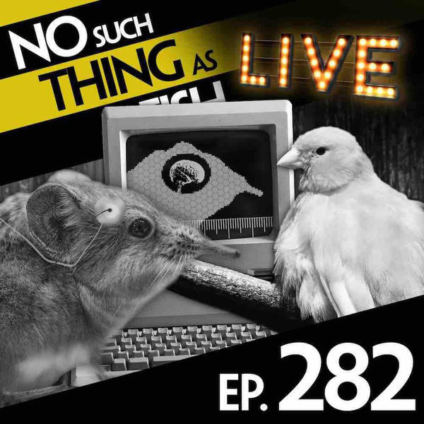 282: No Such Thing As A Bored Shrew
