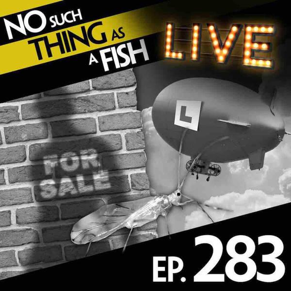 283: No Such Thing As A Lost Shadow