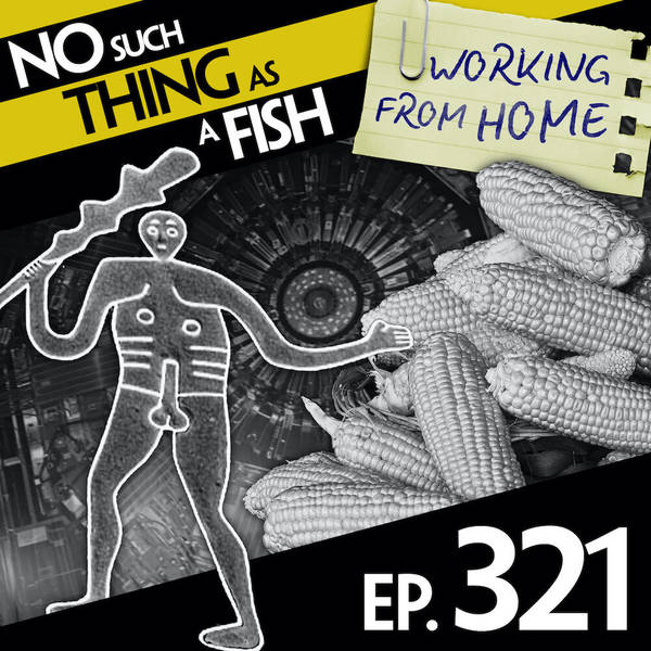 321: No Such Thing As A Frothy Beer