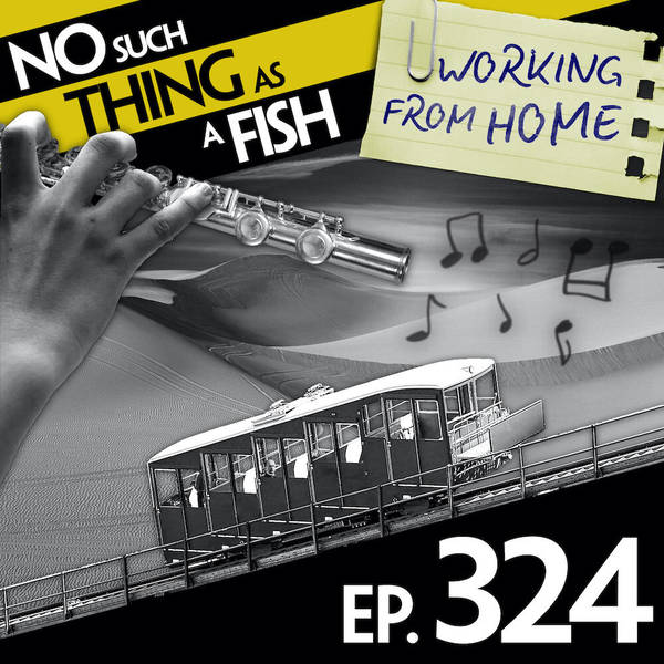 324: No Such Thing As Mambo No. 2