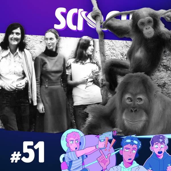 51: The Trimates