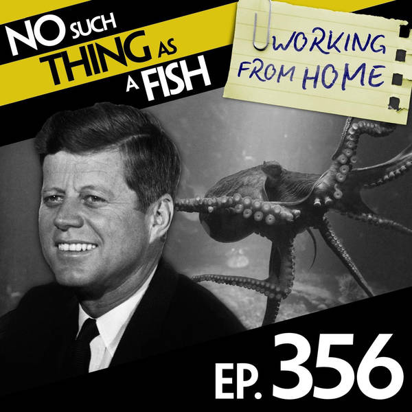 356: No Such Thing As Potter The Great