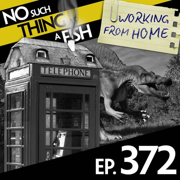 372: No Such Thing As A Dinosaur For Goldilocks