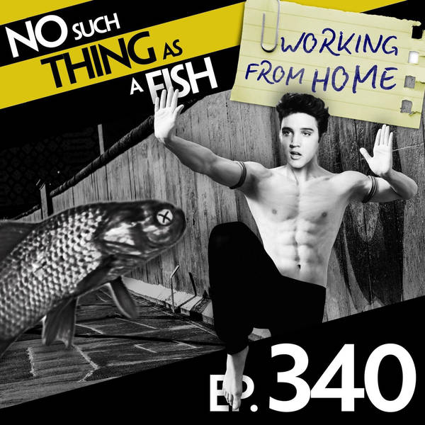 340: No Such Thing As A Didgeridoo in a Bar