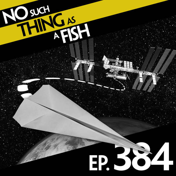 384: No Such Thing As Jiminy's Cricket Shop
