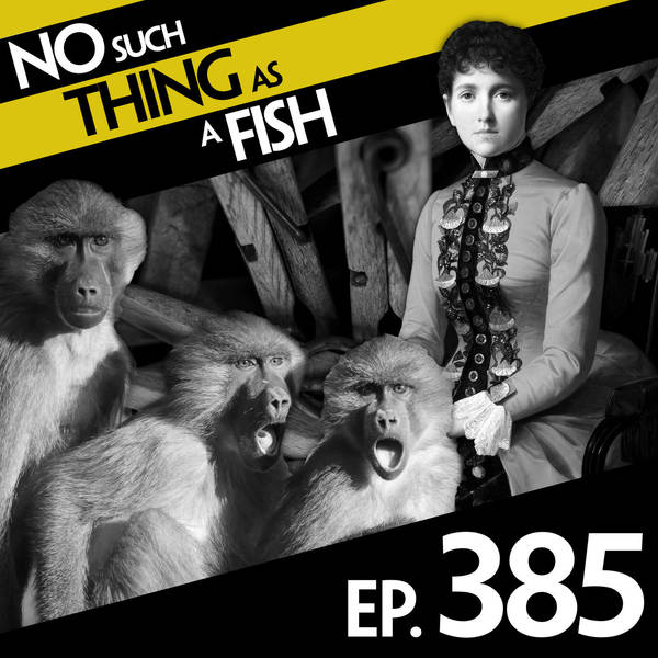 385: No Such Thing As Crossing the Futility Boundary