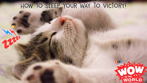 How To Sleep Your Way to Victory