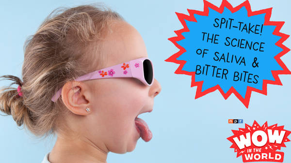 Spit-Take! The Science Of Saliva And Those Bitter Bites