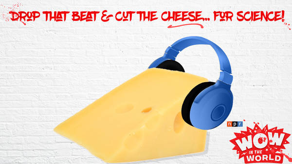 Drop That Beat and Cut The Cheese...For Science!