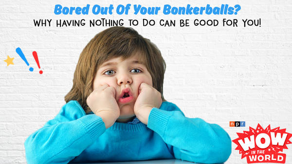 Bored Out Of Your Bonkerballs? (encore)