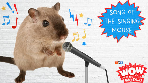 Song Of The Singing Mouse (encore)