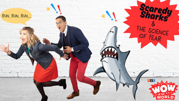 Scaredy Sharks & The Science of Fear (encore)