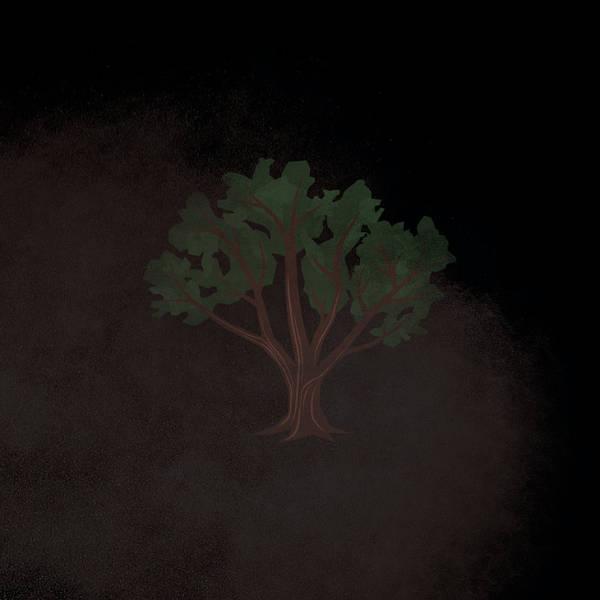 S1E14: The Pecan Grove