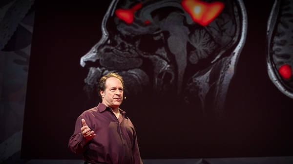 The future of psychedelic-assisted psychotherapy   Rick Doblin