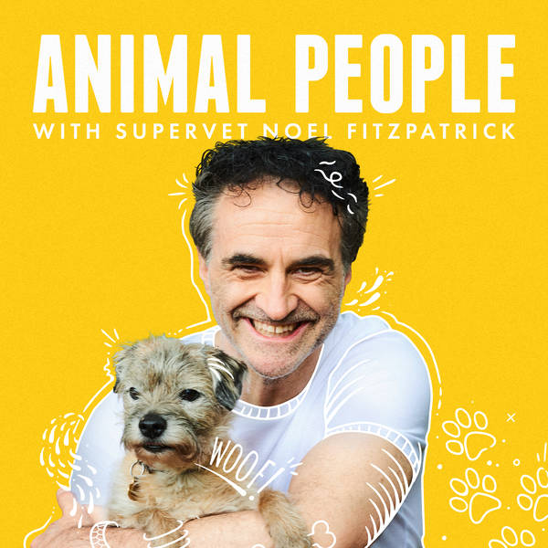 Animal People with Supervet Noel Fitzpatrick image