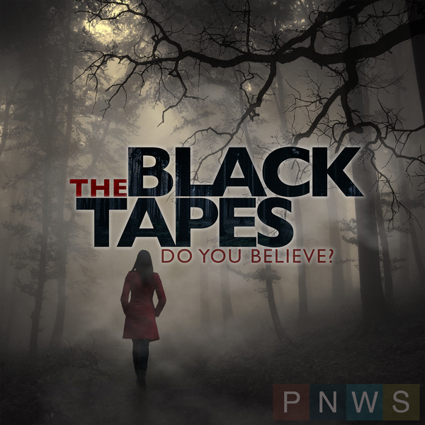 The Black Tapes image