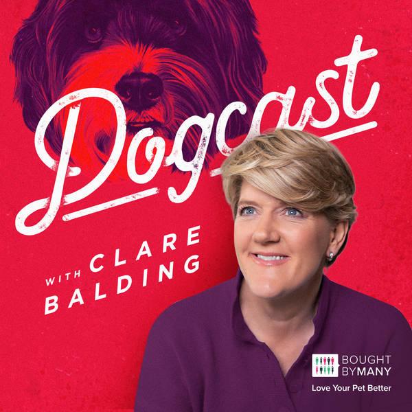 Dogcast with Clare Balding image