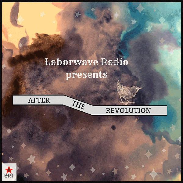 Malls After the Revolution (Laborwave Radio Appearance)